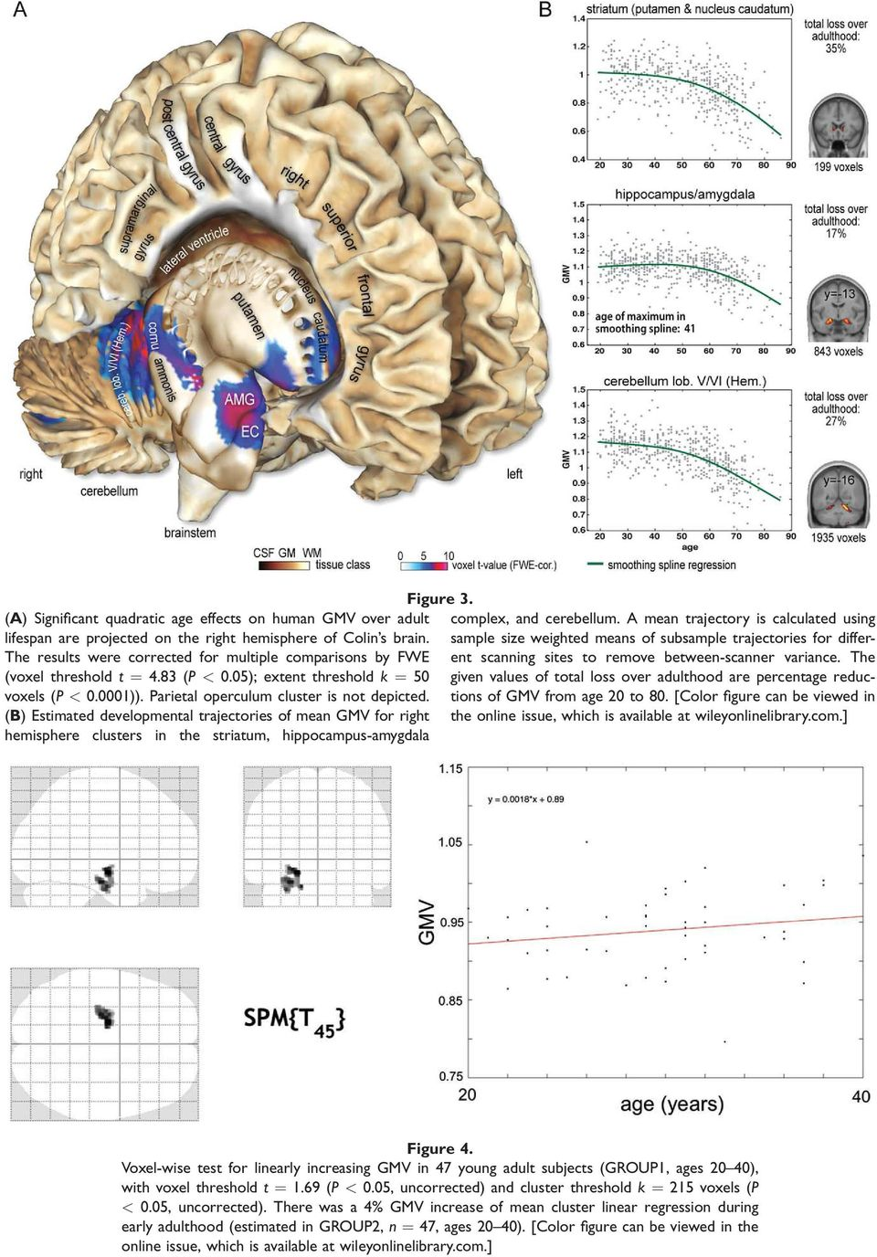 The 547 healthy subjects revealed nonlinear GMV development in the bilateral anterior hippocampus-amygdala complex, the cerebellum, the striatum, and moreover small portions of the parietal operculum