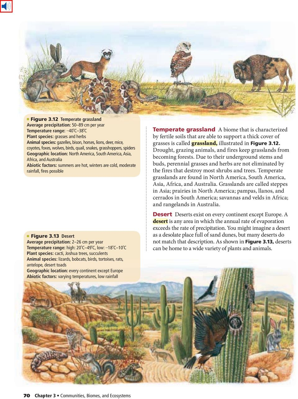 foxes, wolves, birds, quail, snakes, grasshoppers, spiders Geographic location: North America, South America, Asia, Africa, and Australia Abiotic factors: summers are hot, winters are cold, moderate