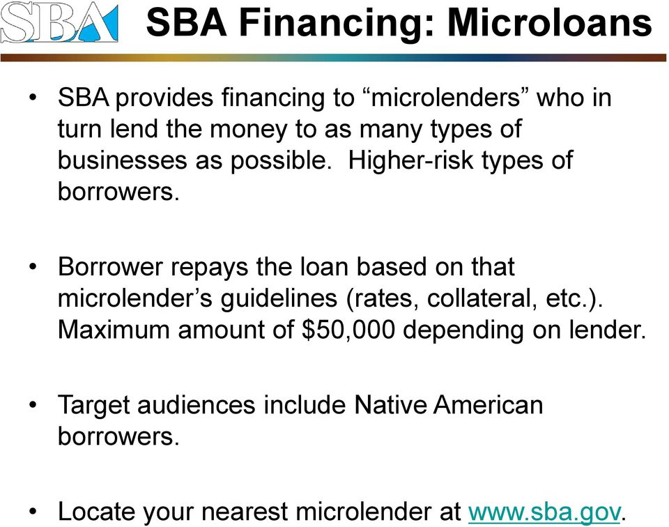 Borrower repays the loan based on that microlender s guidelines (rates, collateral, etc.).