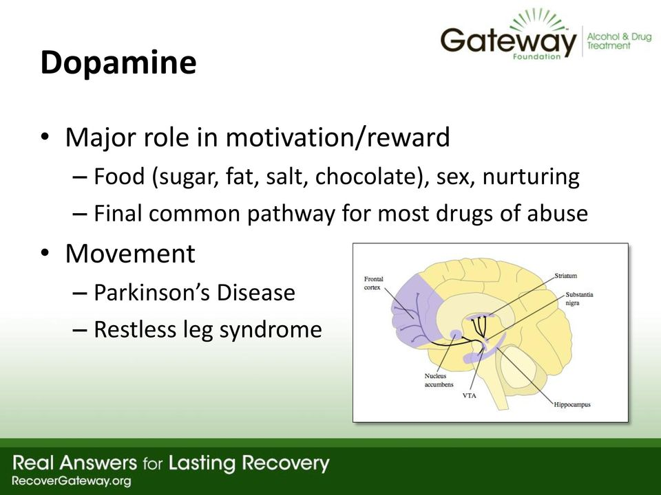 Final common pathway for most drugs of abuse