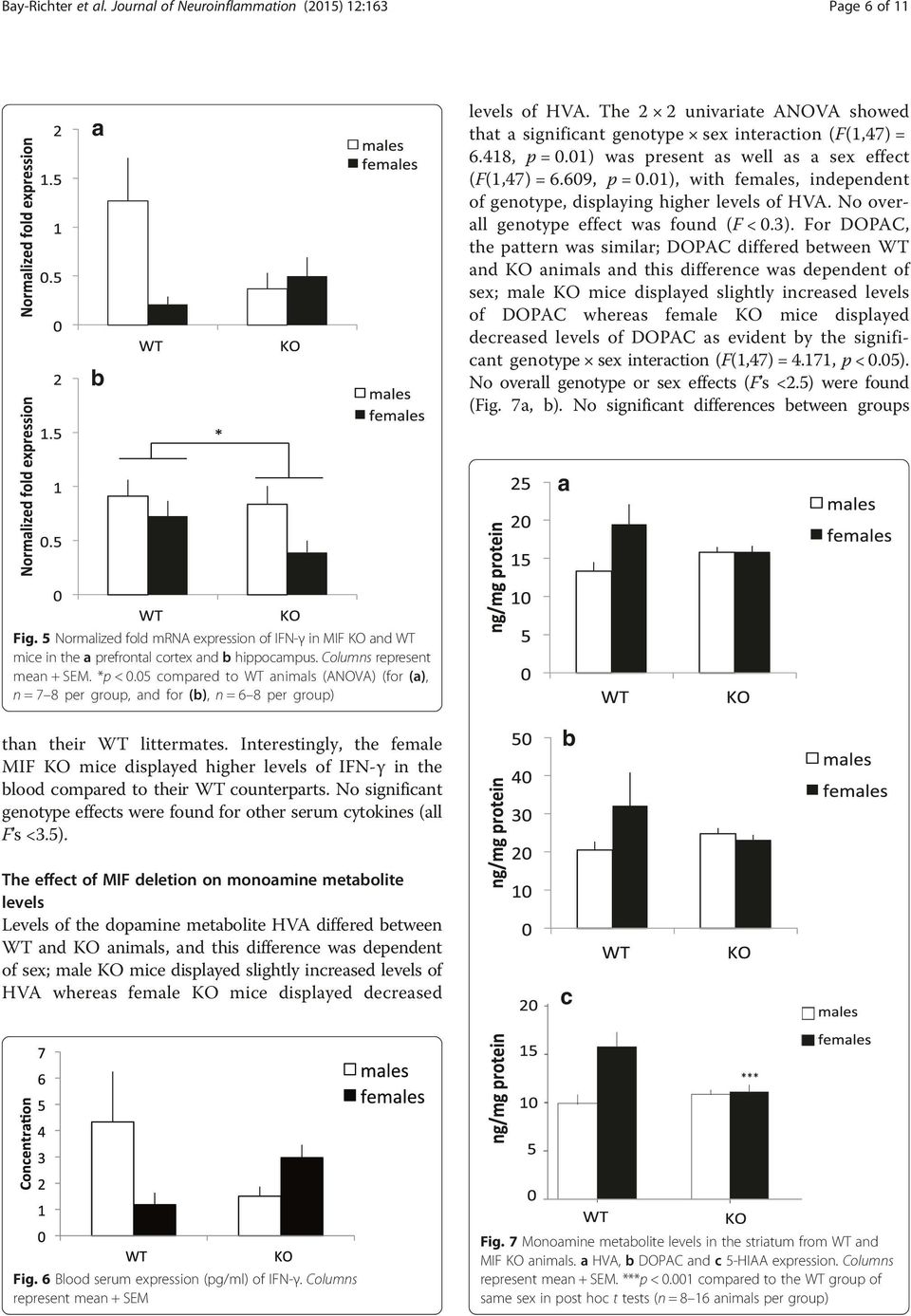 For DOPAC, the pattern was similar; DOPAC differed between WT and KO animals and this difference was dependent of sex; male KO mice displayed slightly increased levels of DOPAC whereas female KO mice