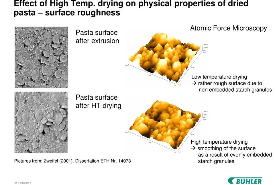 Force Microscopy Pasta surface after HT-drying Low temperature drying rather rough surface due to non