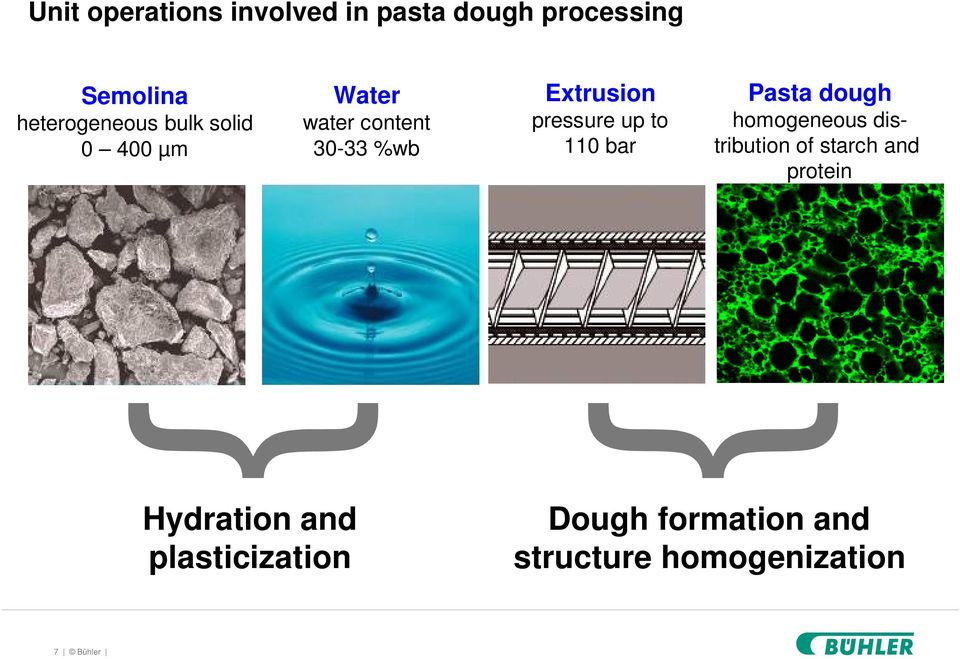 110 bar Pasta dough homogeneous distribution of starch and protein