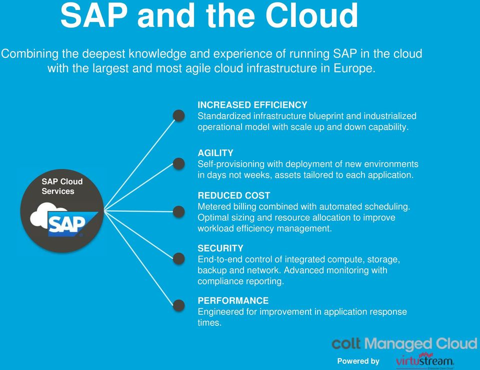 SAP Cloud Services AGILITY Self-provisioning with deployment of new environments in days not weeks, assets tailored to each application.
