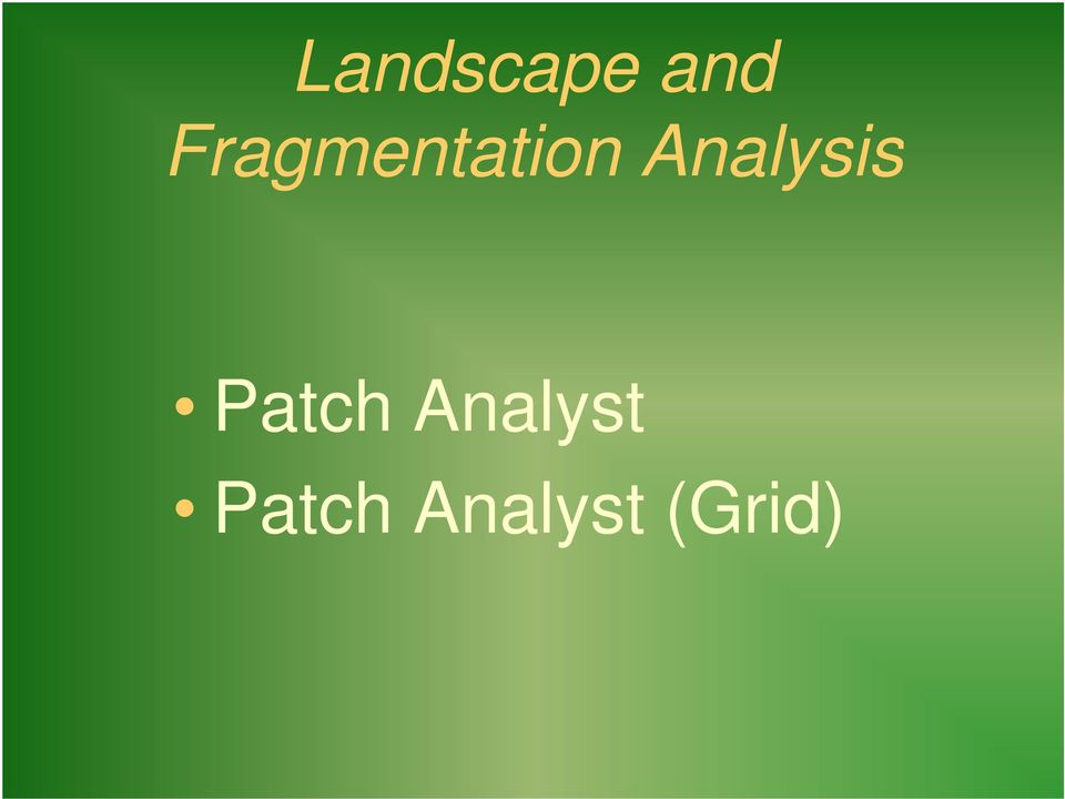 Analysis Patch