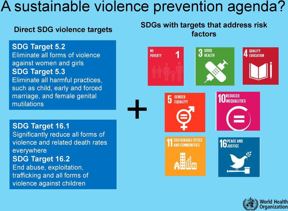 3 Eliminate all harmful practices, such as child, early and forced marriage, and female genital mutilations SDG Target 16.