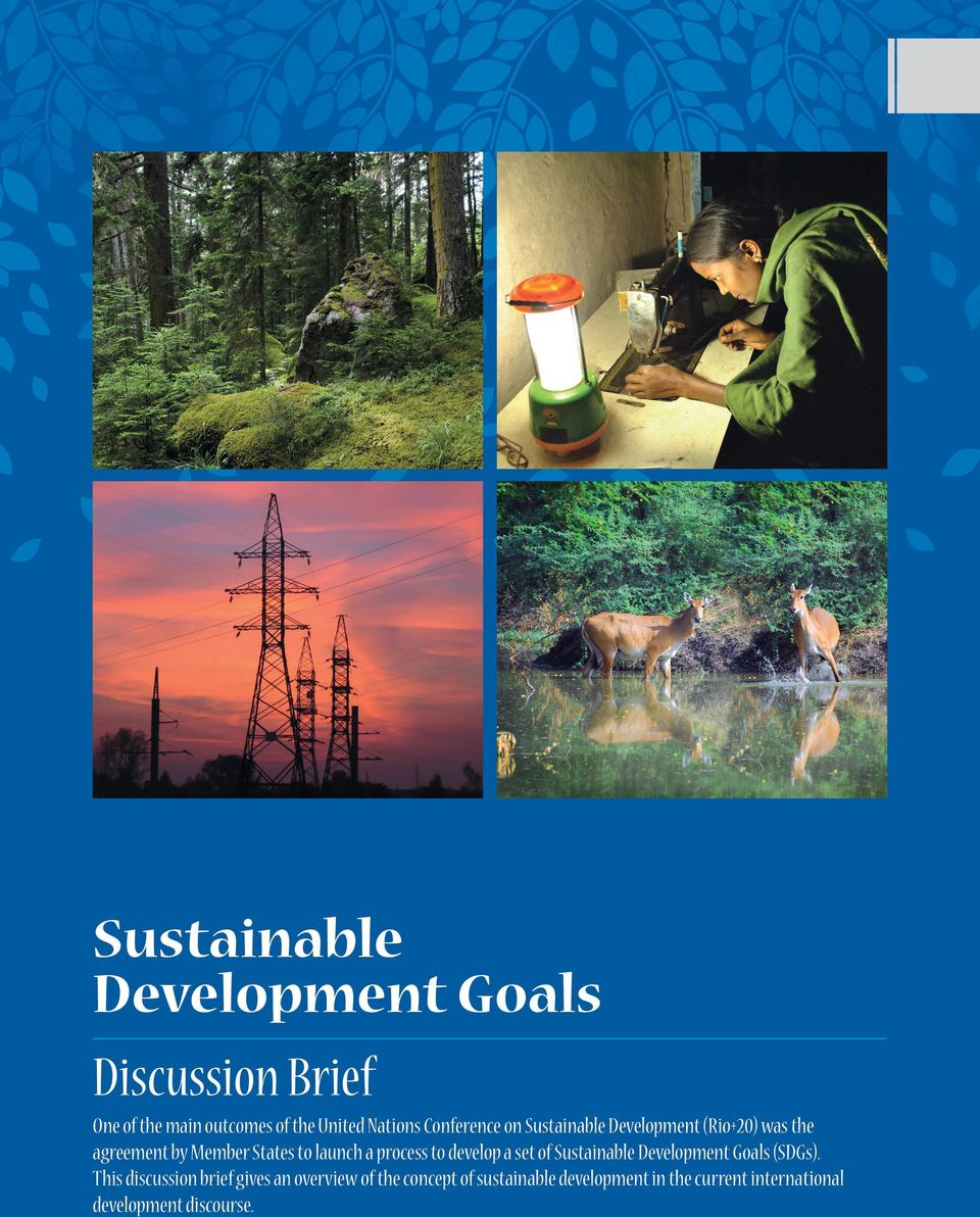 process to develop a set of Sustainable Development Goals (SDGs).