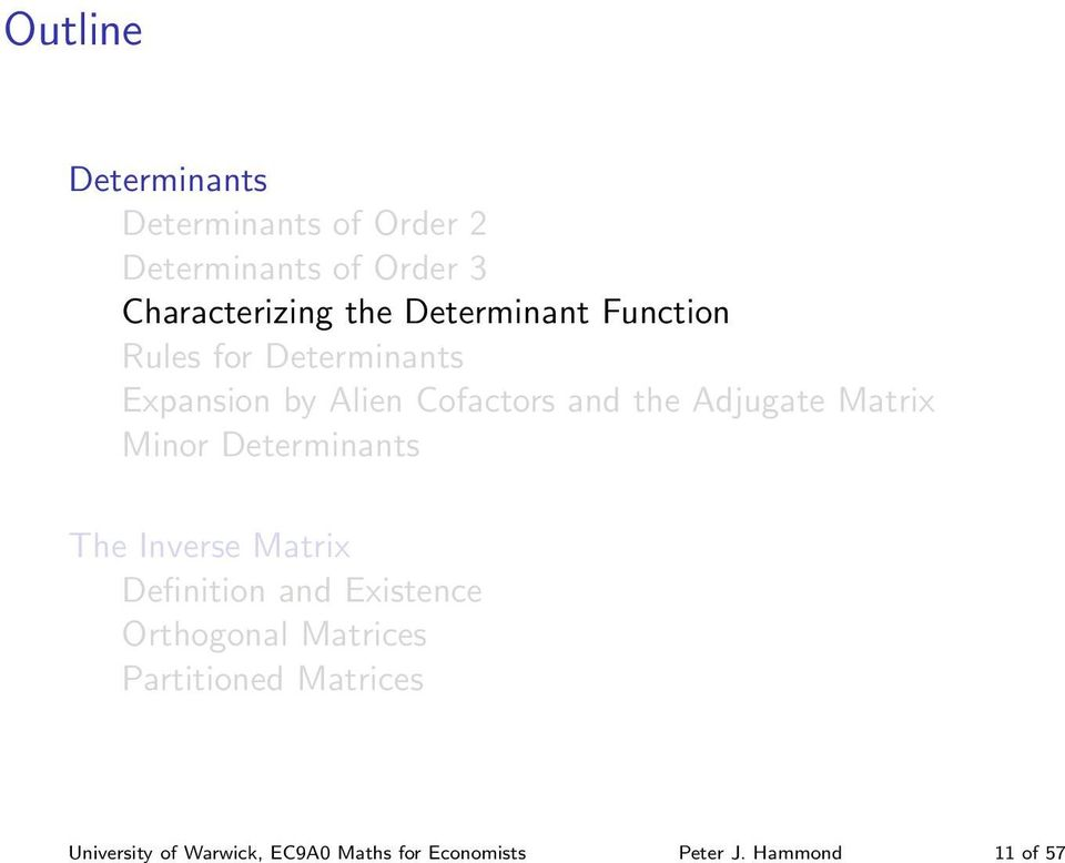 Characterizing the Determinant Function Rules for Determinants Expansion by Alien