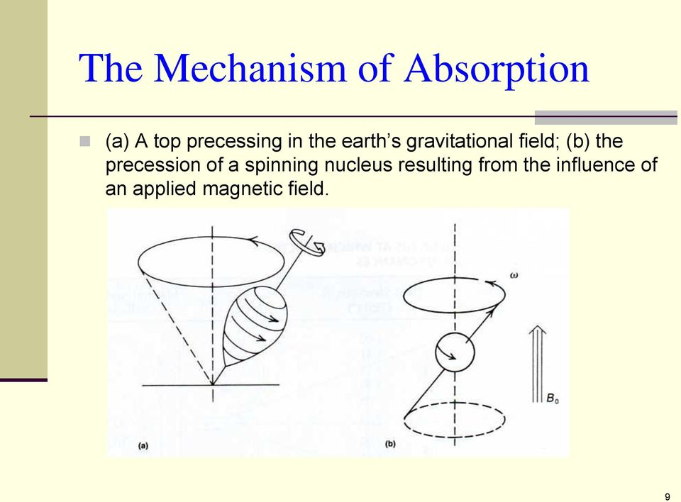 (b) the precession of a spinning nucleus