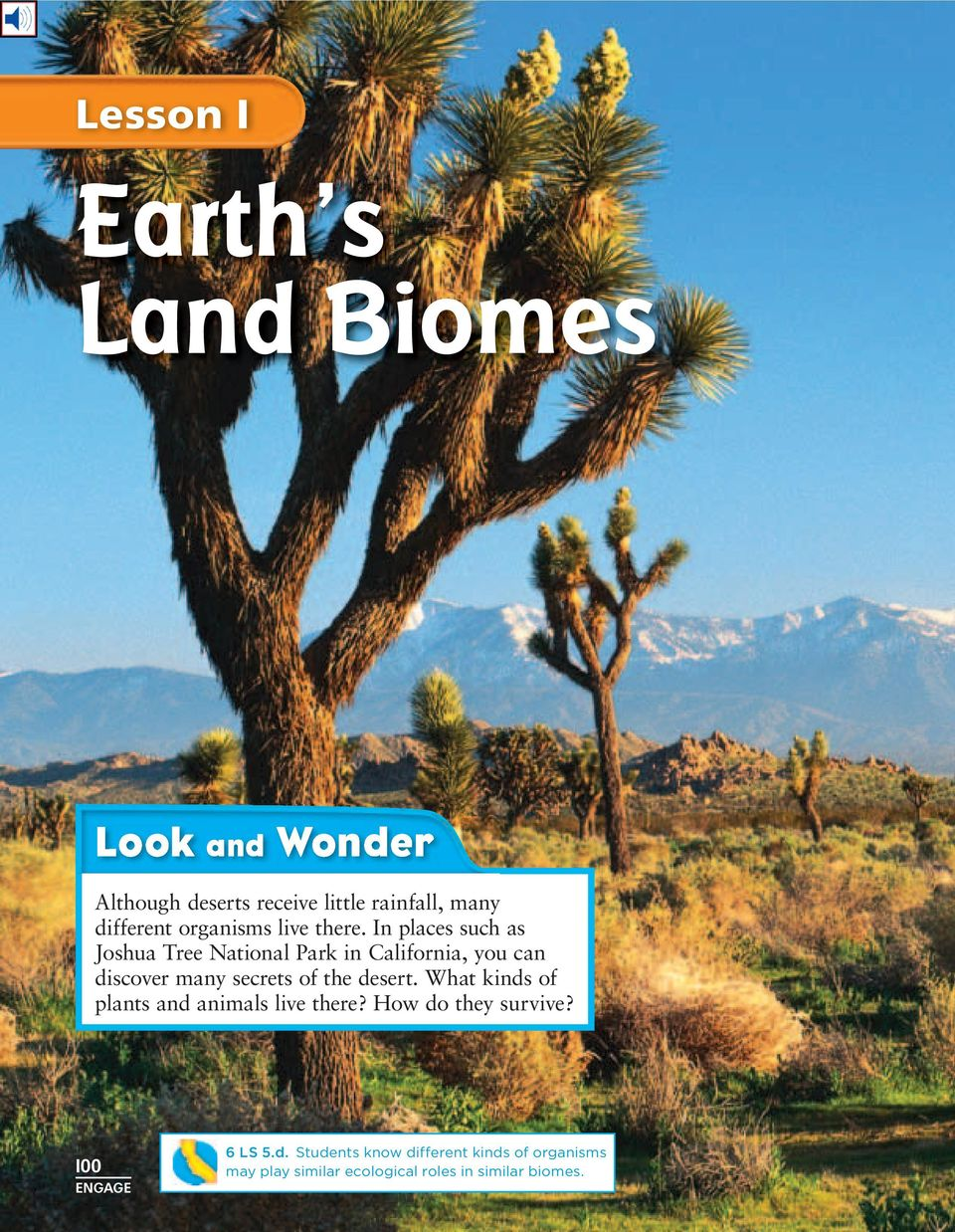 In places such as Joshua Tree National Park in California, you can discover many secrets of the