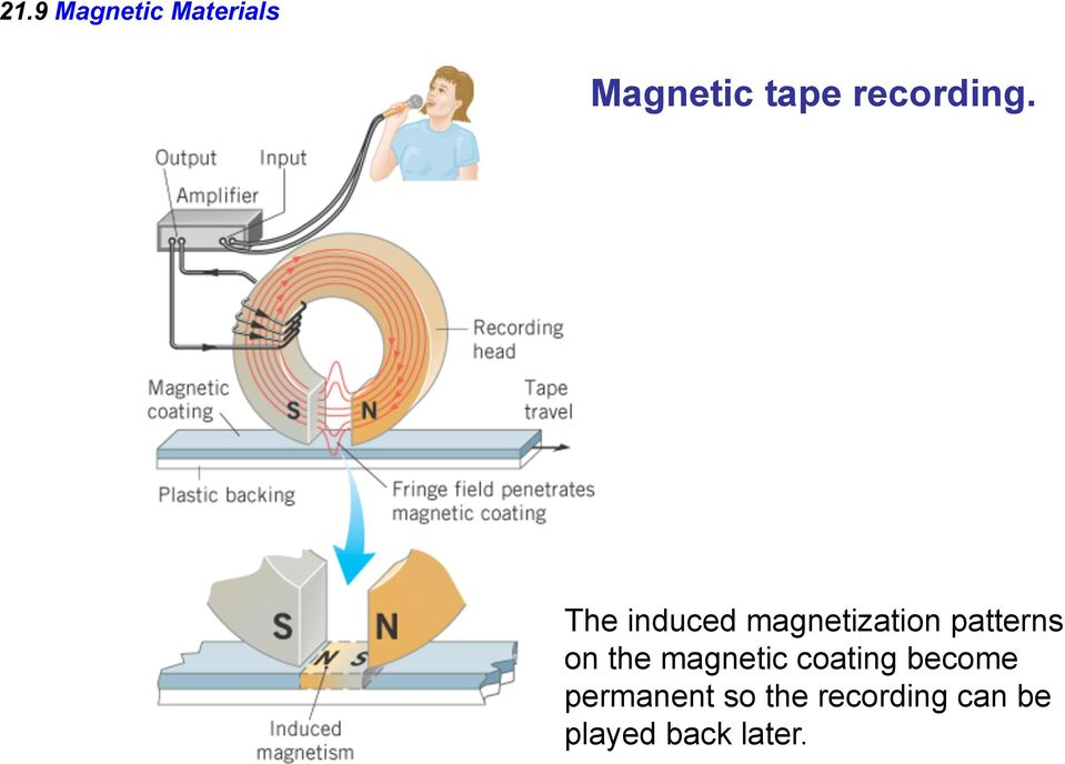 The induced magnetization patterns on the