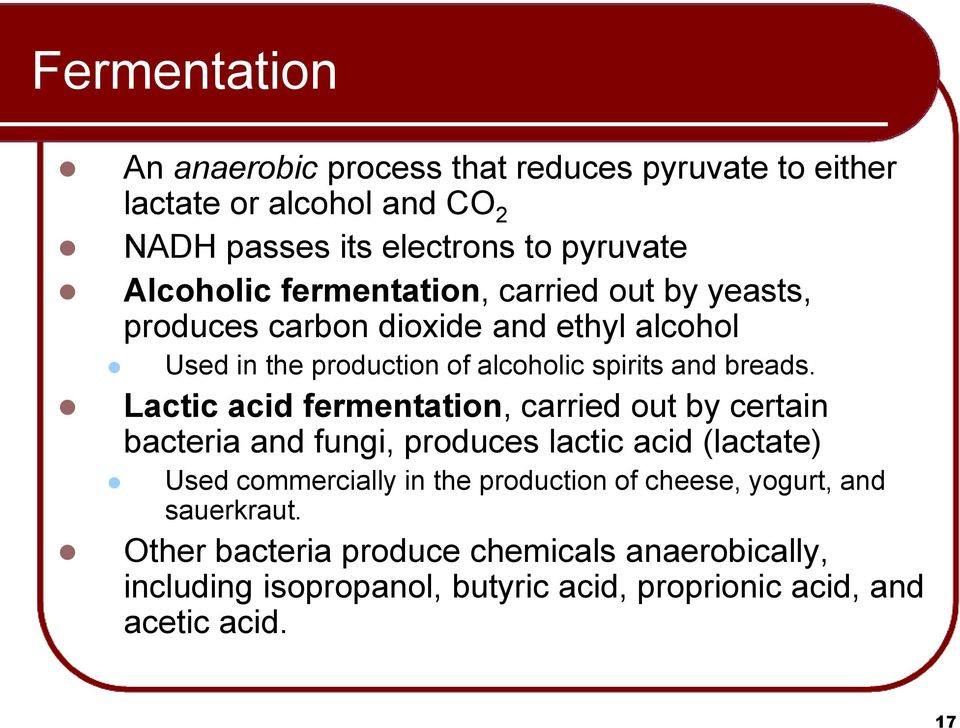 Lactic acid fermentation, carried out by certain bacteria and fungi, produces lactic acid (lactate) Used commercially in the production of