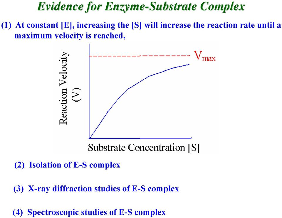 maximum velocity is reached, (2) Isolation of E-S complex (3)