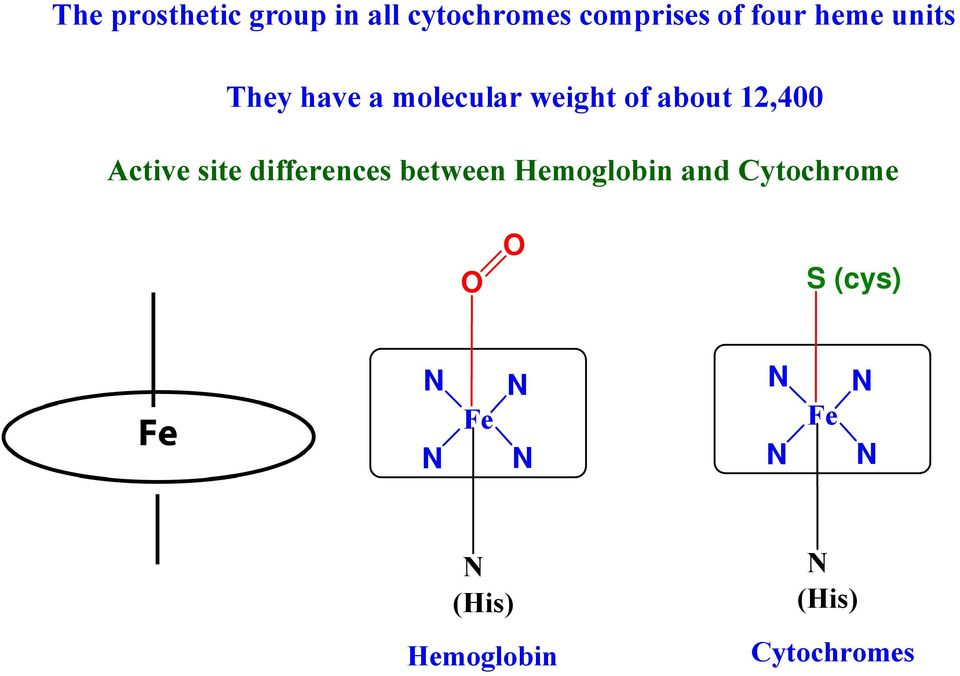 12,400 Active site differences between Hemoglobin and