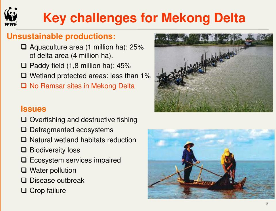 Paddy field (1,8 million ha): 45% Wetland protected areas: less than 1% No Ramsar sites in Mekong Delta