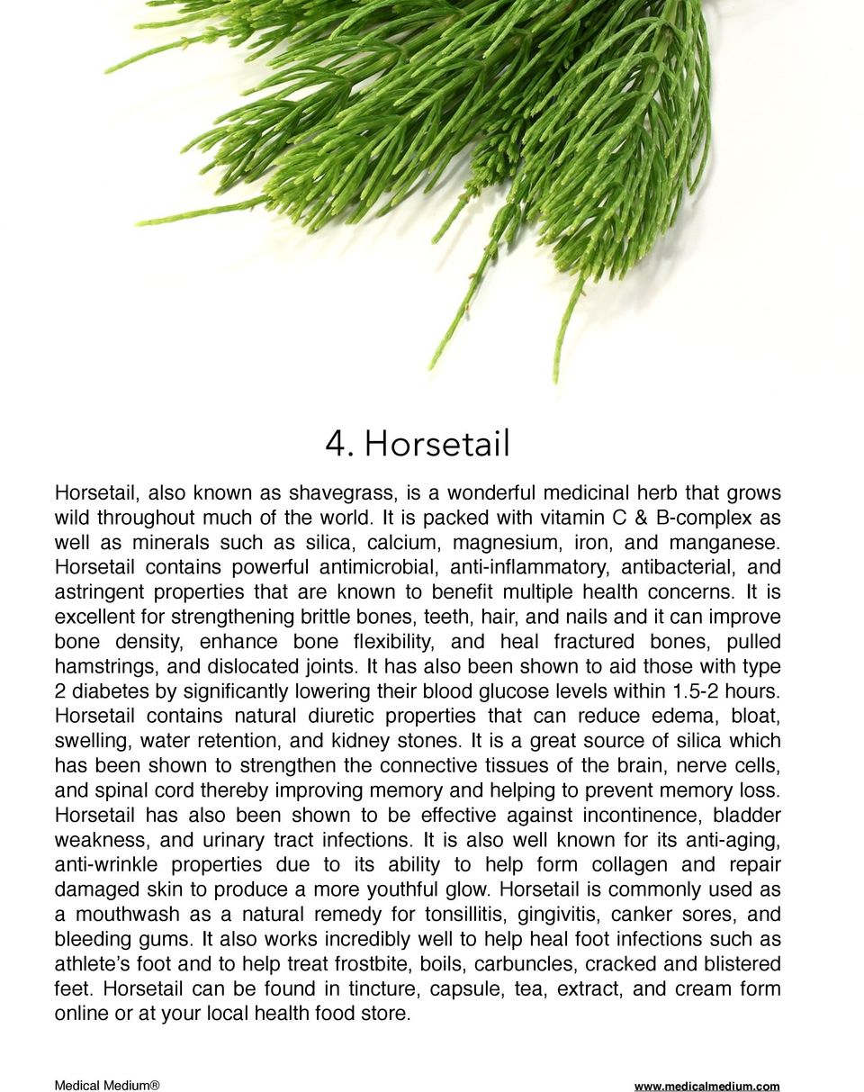 Horsetail contains powerful antimicrobial, anti-inflammatory, antibacterial, and astringent properties that are known to benefit multiple health concerns.