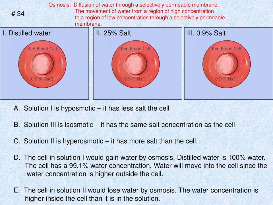 Solution I is hyposmotic it has less salt the cell B. Solution III is isosmotic it has the same salt concentration as the cell C. Solution II is hyperosmotic it has more salt than the cell. D.