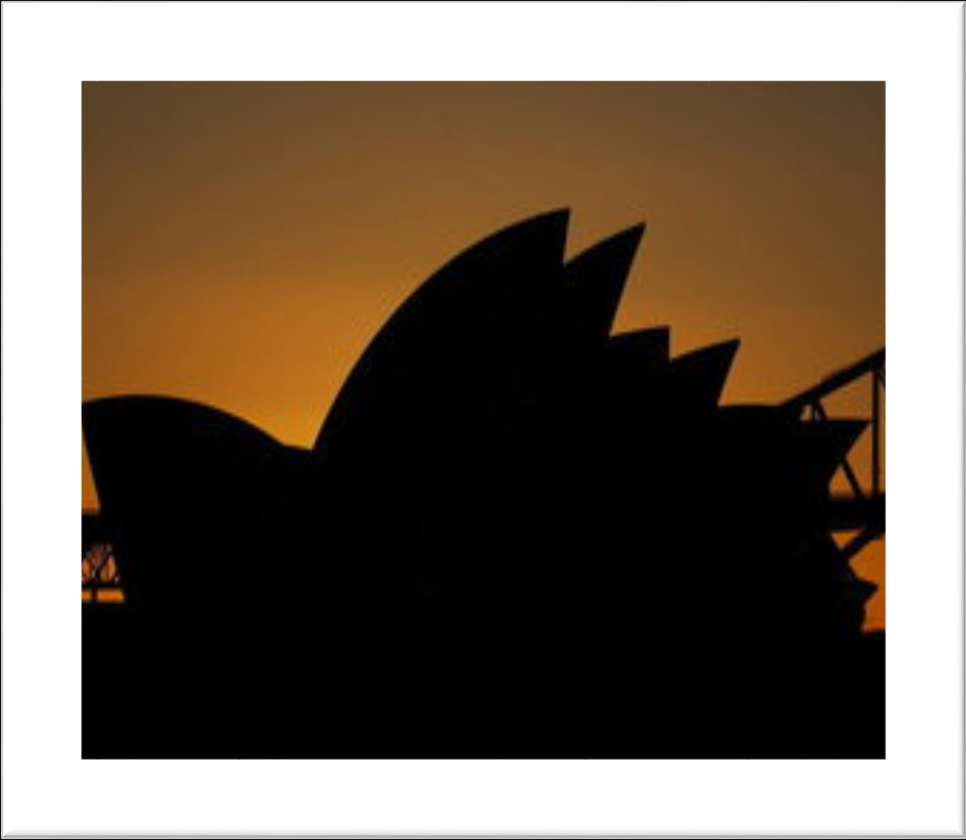 The role of the trust was is to maintain the and operate Sydney opera house.