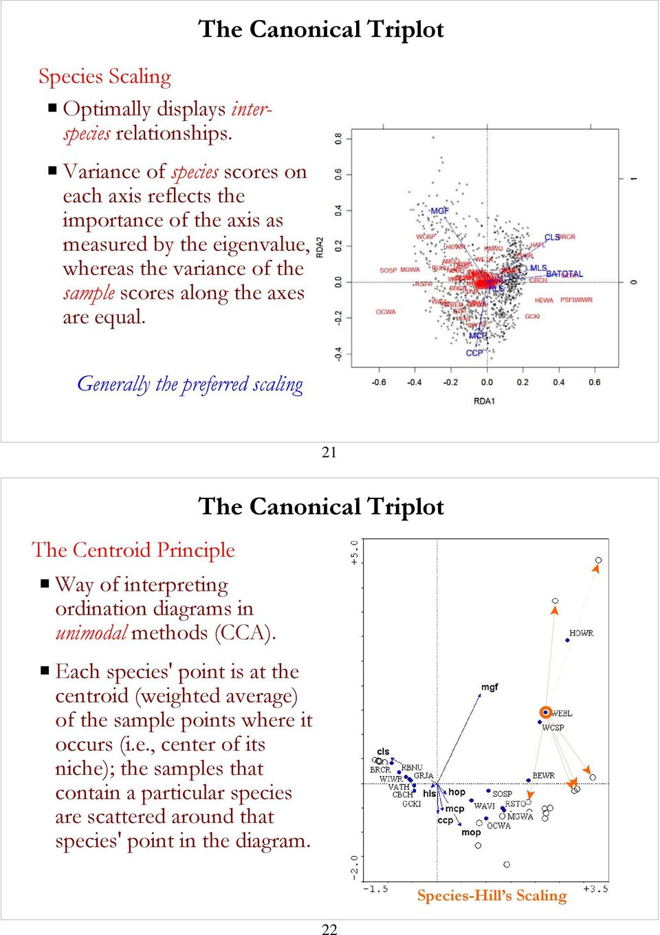 are equal. The Canonical Triplot Generally the preferred scaling 21 The Centroid Principle P Way of interpreting ordination diagrams in unimodal methods (CCA).