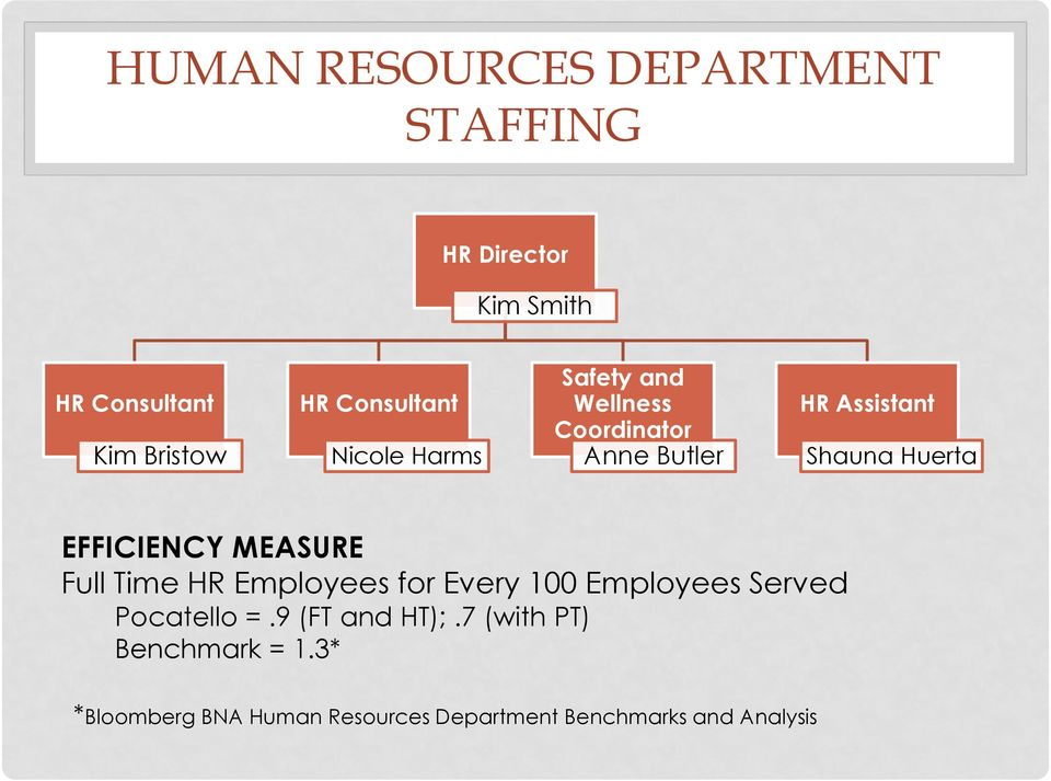 Huerta EFFICIENCY MEASURE Full Time HR Employees for Every 100 Employees Served Pocatello =.
