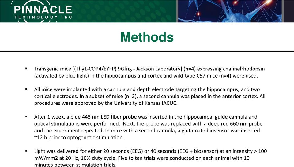 All procedures were approved by the University of Kansas IACUC. After 1 week, a blue 445 nm LED fiber probe was inserted in the hippocampal guide cannula and optical stimulations were performed.