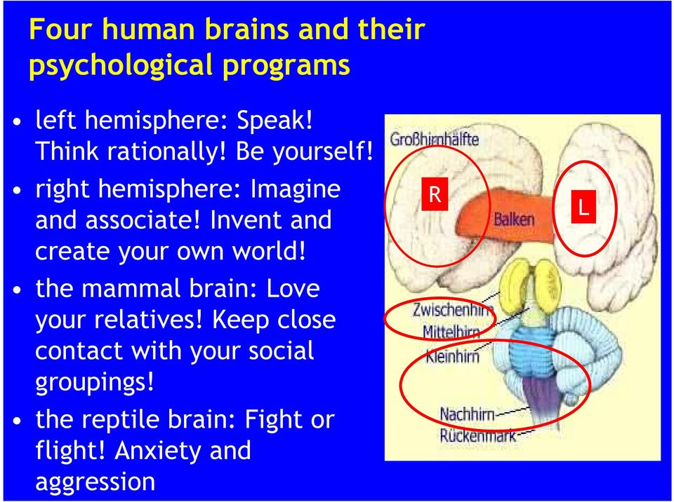 Invent and create your own world! the mammal brain: Love your relatives!