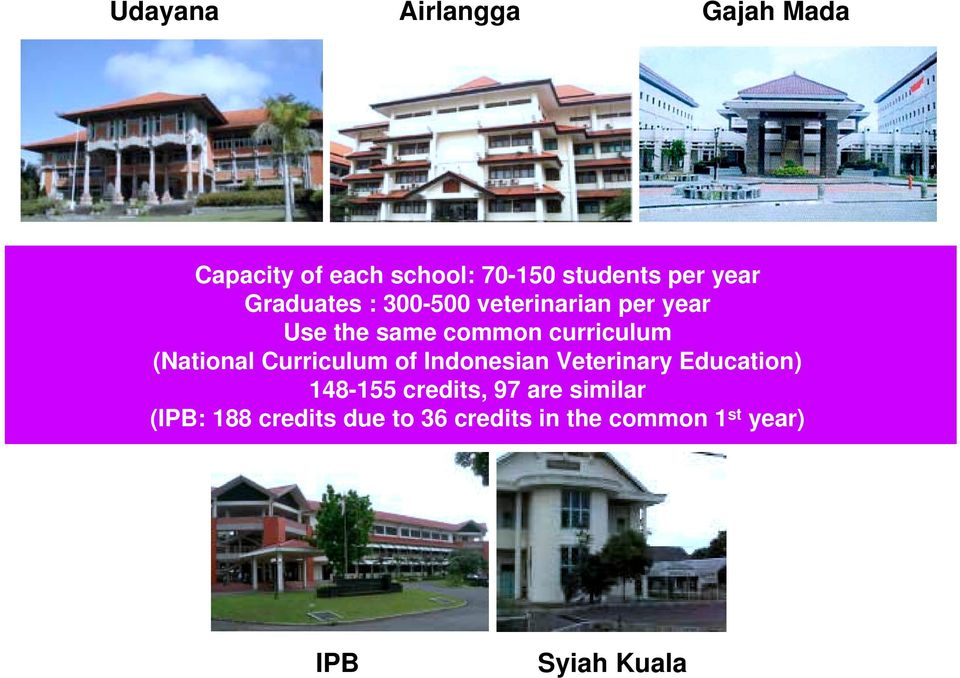 (National Curriculum of Indonesian Veterinary Education) 148-155 credits, 97