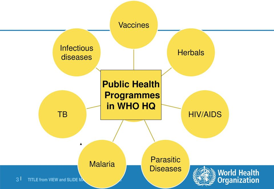 of Programmes Medicines in WHO in