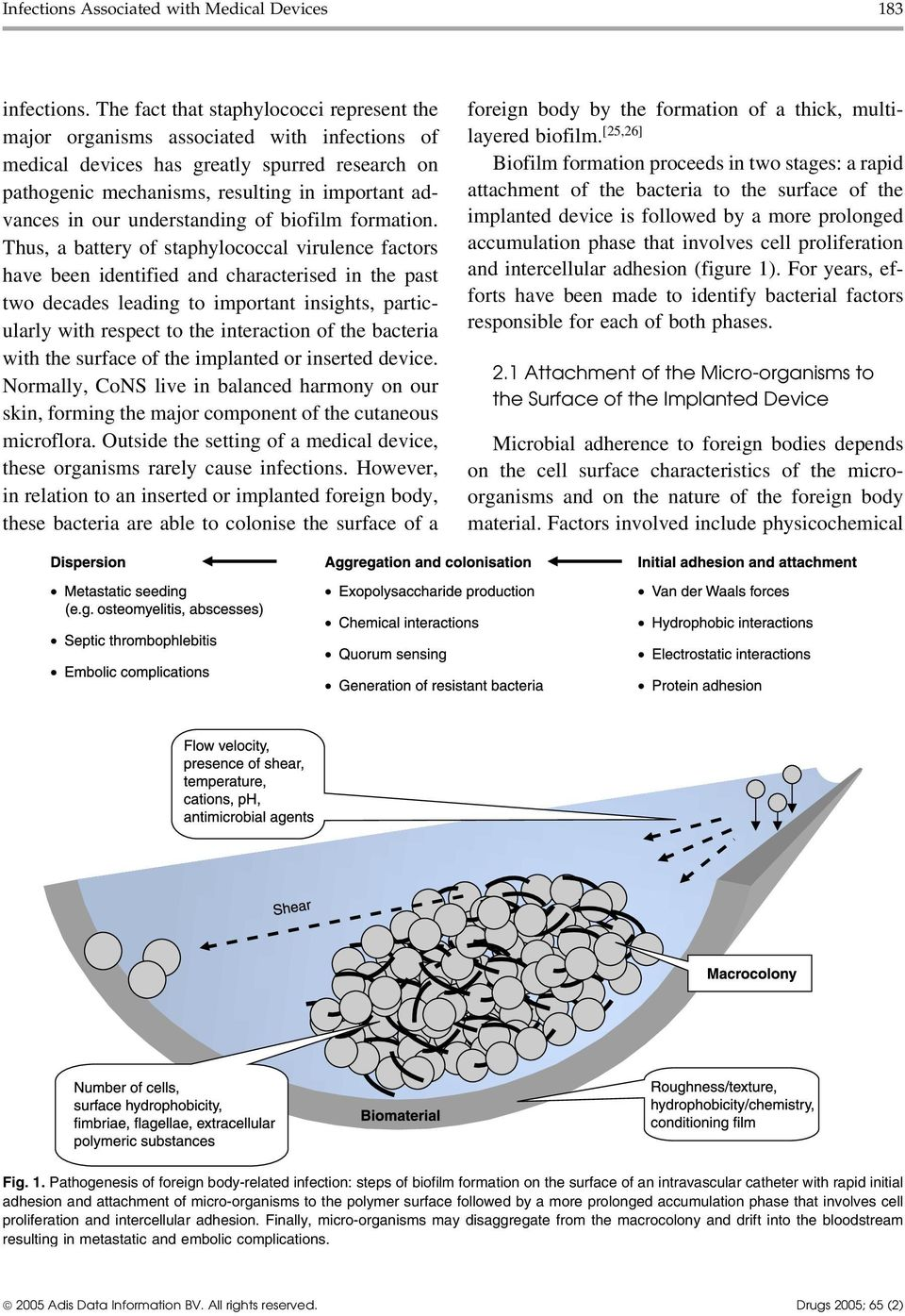understanding of biofilm formation.