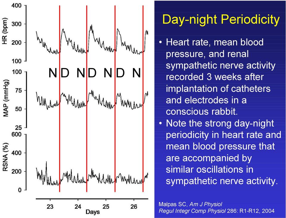 Note the strong day-night periodicity in heart rate and mean blood pressure that are accompanied by