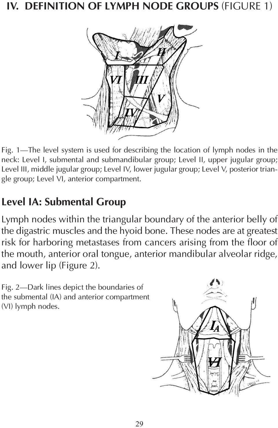 Level IV, lower jugular group; Level V, posterior triangle group; Level VI, anterior compartment.