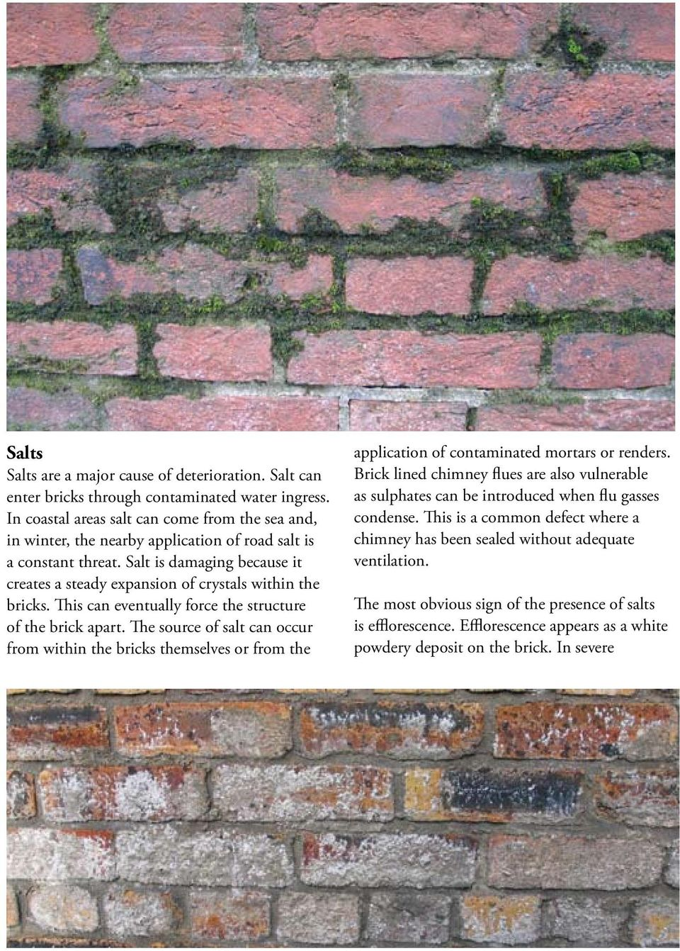 Salt is damaging because it creates a steady expansion of crystals within the bricks. This can eventually force the structure of the brick apart.
