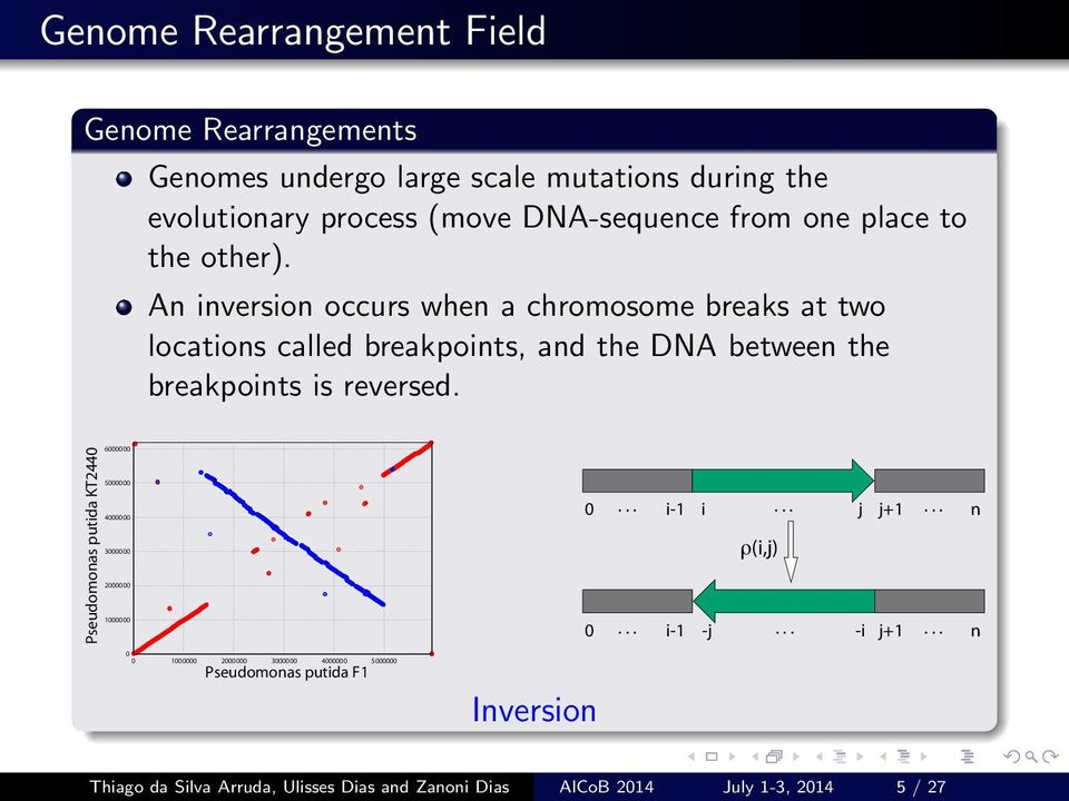 An inversion occurs when a chromosome breaks at two locations called breakpoints, and the DNA between the breakpoints is reversed.