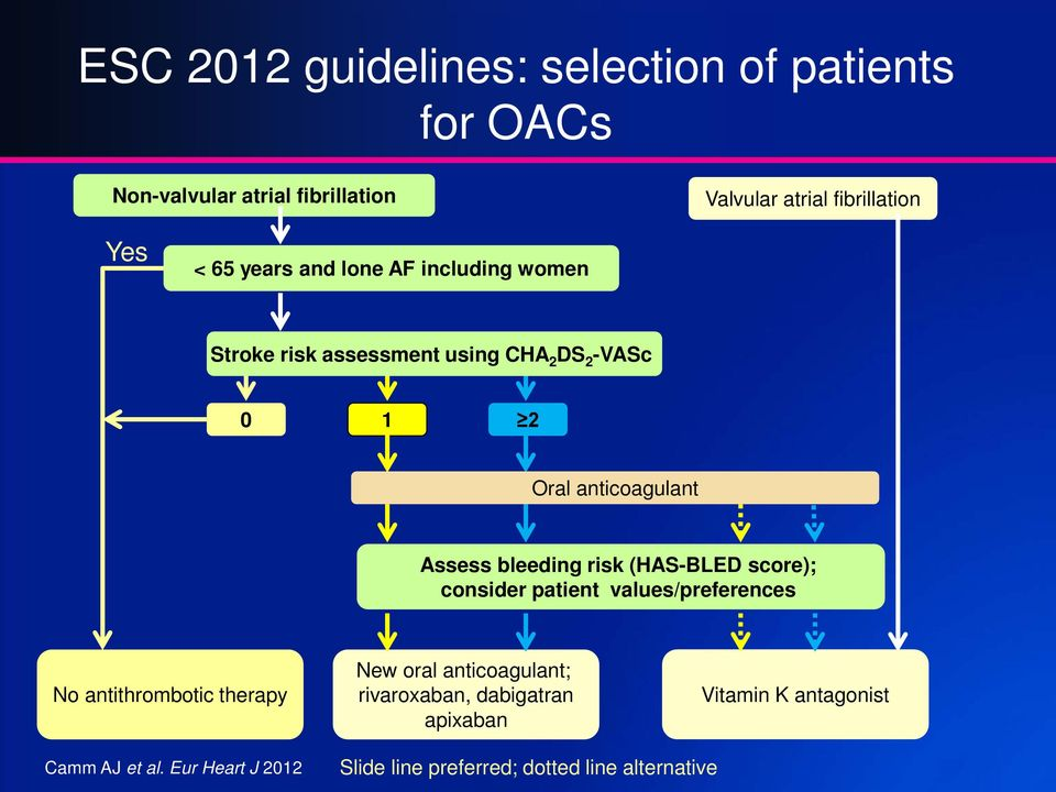 bleeding risk (HAS-BLED score); consider patient values/preferences No antithrombotic therapy New oral anticoagulant;