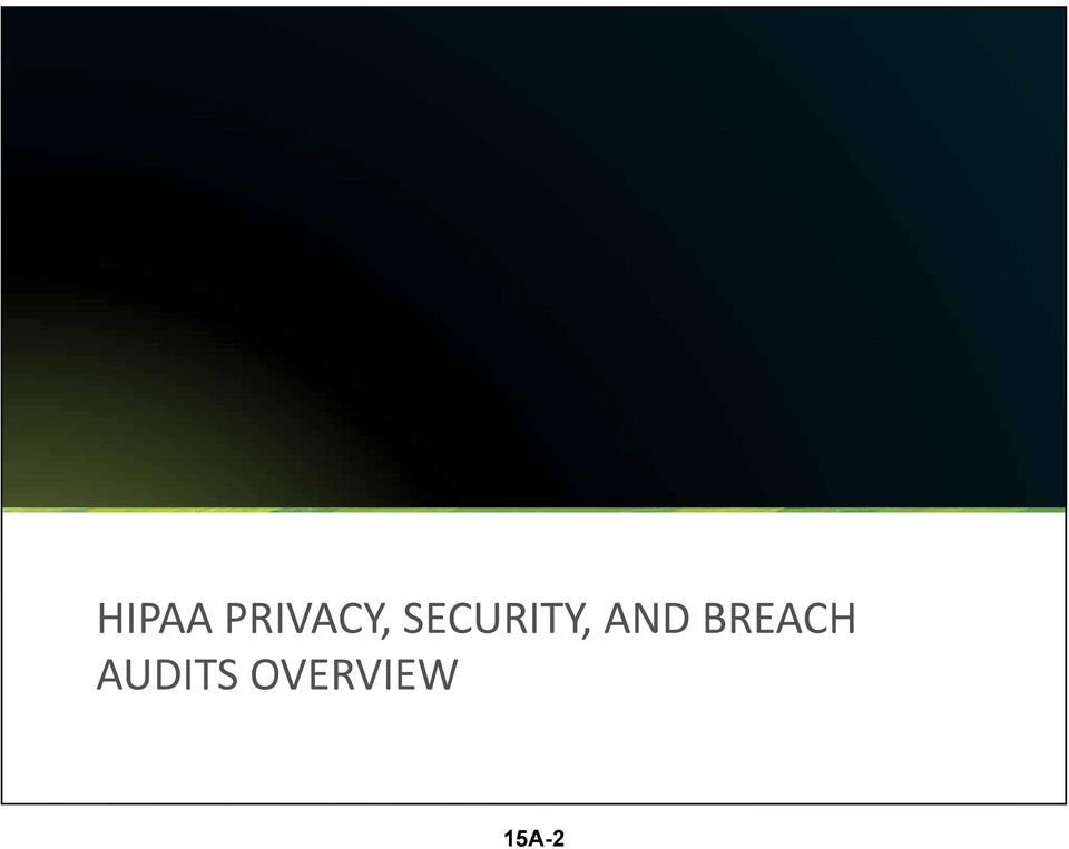 BREACH AUDITS