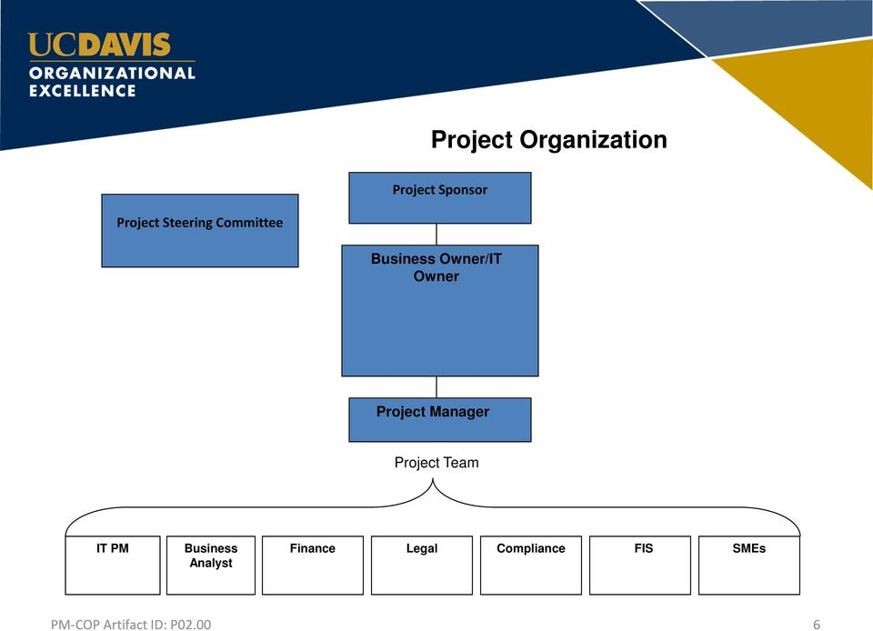Owner/IT Owner Project Manager Project Team