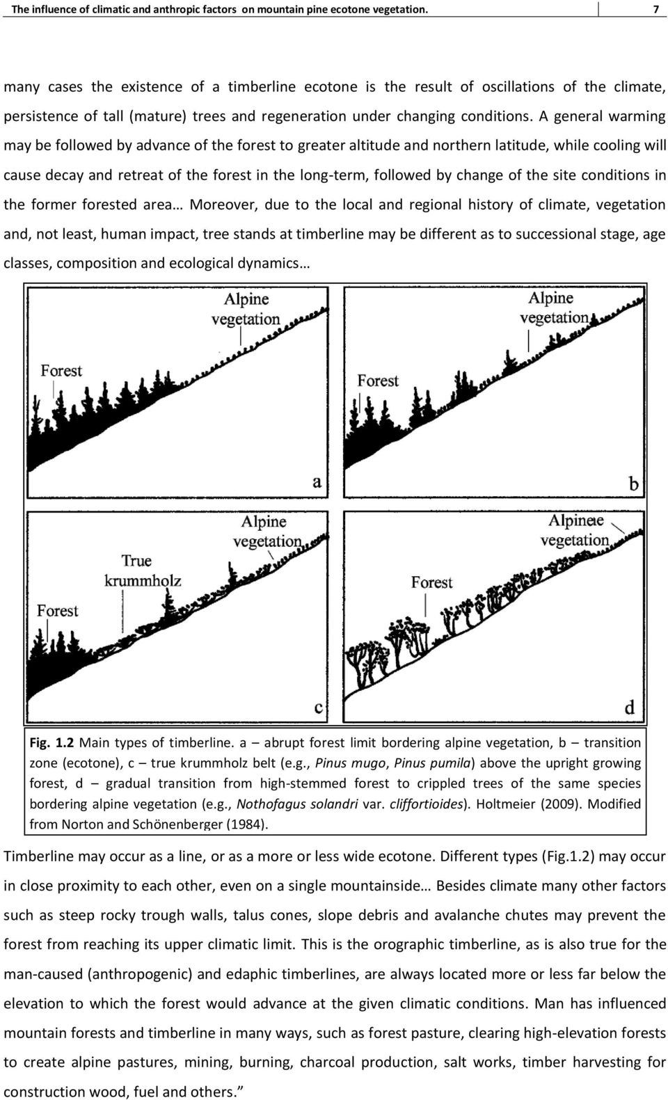 A general warming may be followed by advance of the forest to greater altitude and northern latitude, while cooling will cause decay and retreat of the forest in the long-term, followed by change of