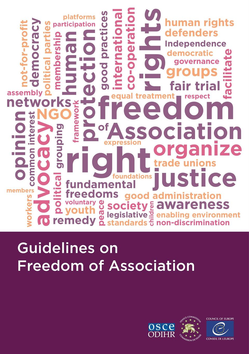 right fundamental freedoms voluntary youth society remedy peace foundations legislative standards Independence democratic governance Guidelines on Freedom of Association