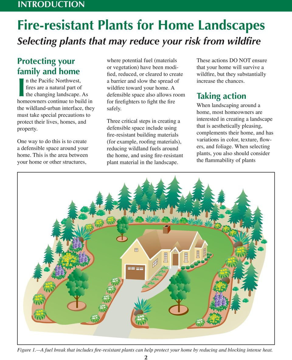 One way to do this is to create a defensible space around your home.