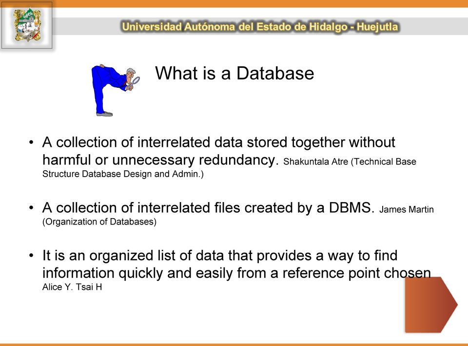 ) A collection of interrelated files created by a DBMS.