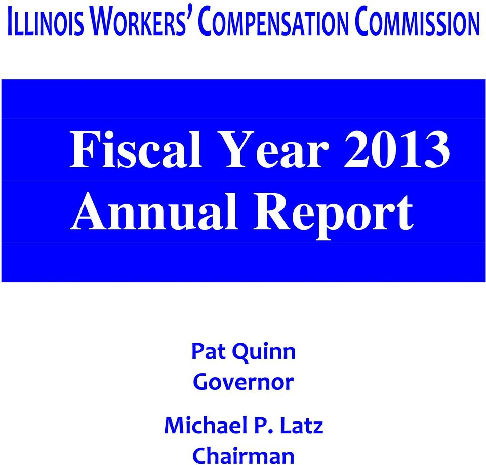 Fiscal Year 2013 Annual