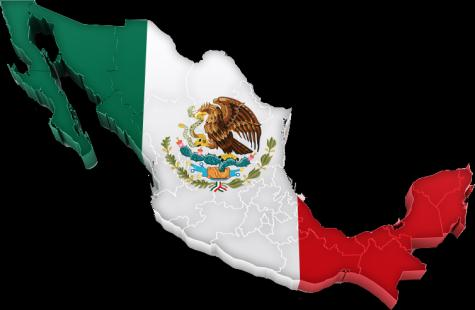 Plant A Industrial hubs in developing markets Mexican fully-owned plants also for international expansion outside NAFTA Fiat 500 produced in Mexico and exported to three continents (North & Latin