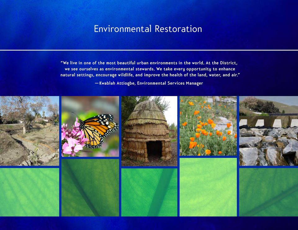 We take every opportunity to enhance natural settings, encourage wildlife, and