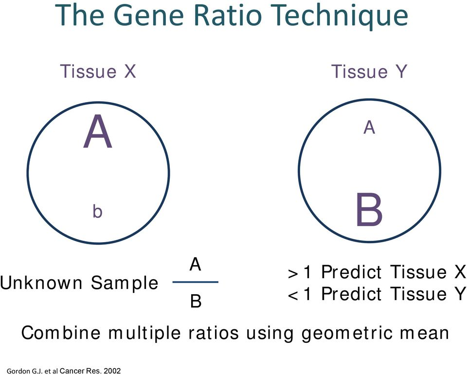 Predict Tissue Y Combine multiple ratios using