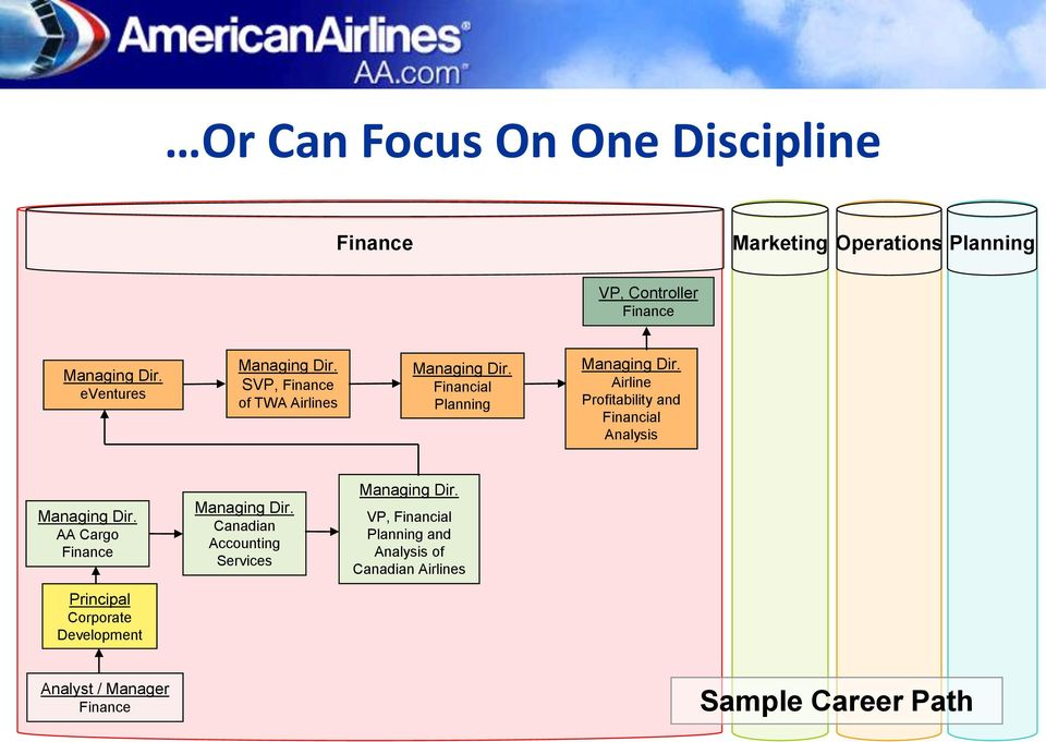 Airline Profitability and Financial Analysis Managing Dir. AA Cargo Finance Managing Dir.