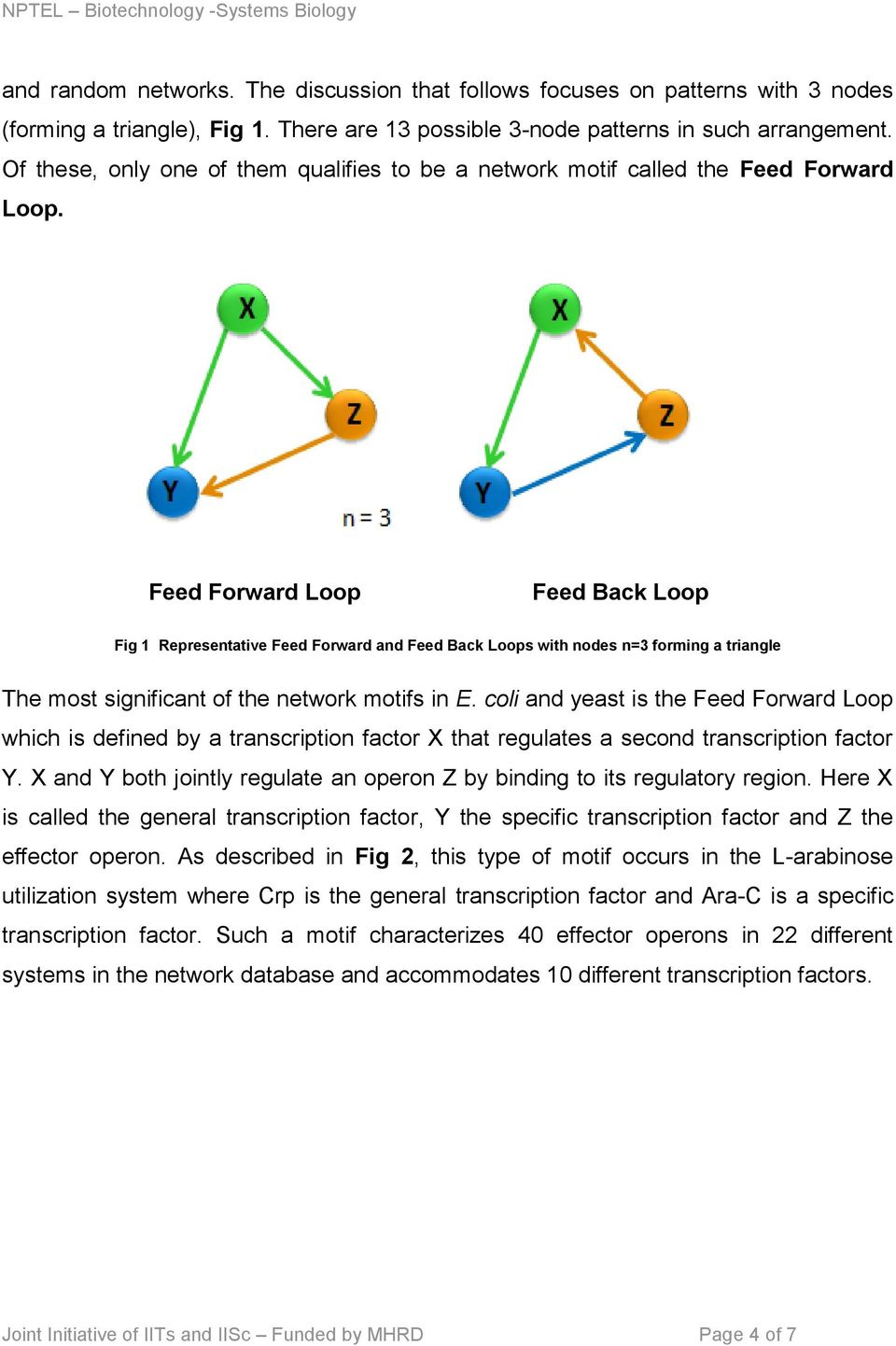 Feed Forward Loop Feed Back Loop Fig 1 Representative Feed Forward and Feed Back Loops with nodes n=3 forming a triangle The most significant of the network motifs in E.