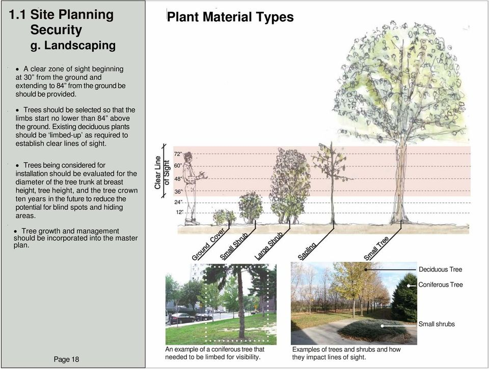 Trees being considered for installation should be evaluated for the diameter of the tree trunk at breast height, tree height, and the tree crown ten years in the future to reduce the potential for