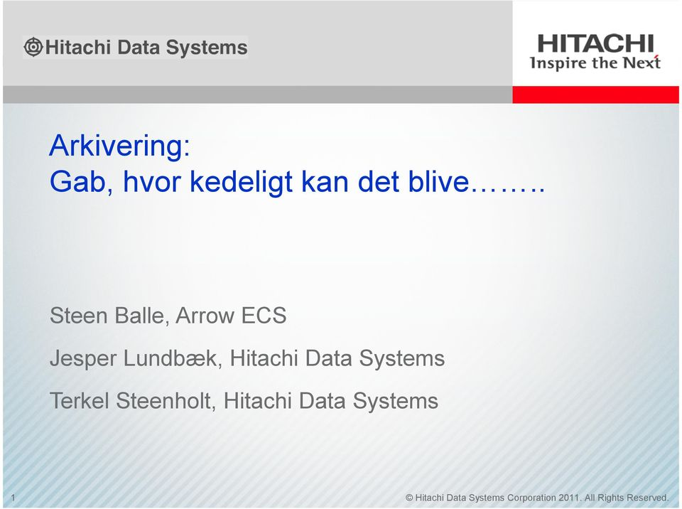 Data Systems Terkel Steenholt, Hitachi Data Systems