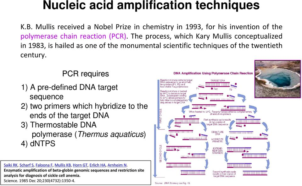 PCR requires 1) A pre-defined DNA target sequence 2) two primers which hybridize to the ends of the target DNA 3) Thermostable DNA polymerase (Thermus aquaticus) 4) dntps