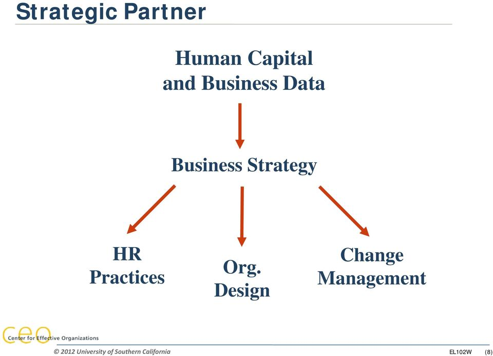 Business Strategy HR Practices